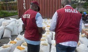 NDLEA seizes illicit drugs worth N60b