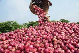 We Will Stop Supply to Southern Nigeria -Onion Marketers Threaten's