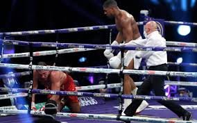 How Lazy is Nigeria youth as Buhari Hails Joshua Following Victory Over Pulev.