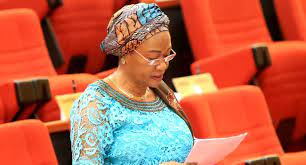Insecurity: Bola, Remi Tinubu under fire for discussing 2023 with Buhari, attacking Senator Adeyemi