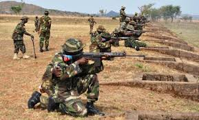The Nigerian Army says, its troops supported by Air Component has eliminated scores of terrorists in Borno