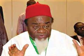 Security Agencies Carrying Out 'Genocide' In South-East – Igbo Elders