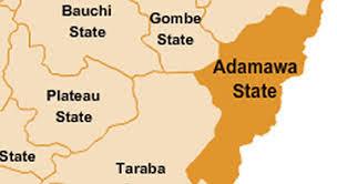 24 Killed As Boko Haram Fighters Raid Communities In Adamawa